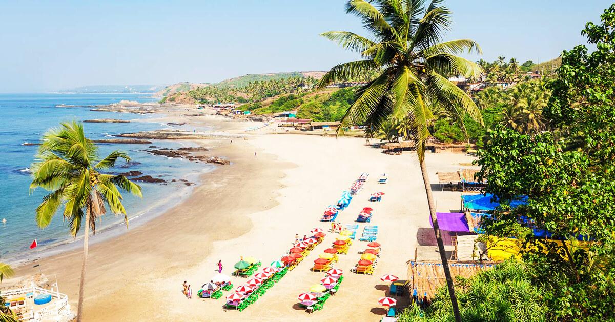 The Goa Trip