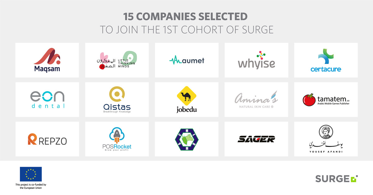 15 companies selected for Endeavor Jordan's Surge, scale-up roadmap for growing enterprises